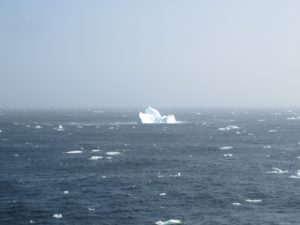 The first icebergs (Photographs: Nora Fried)