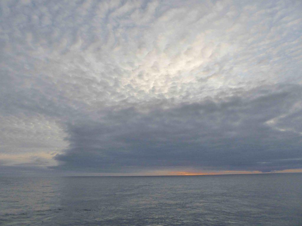 160803_evening_sky