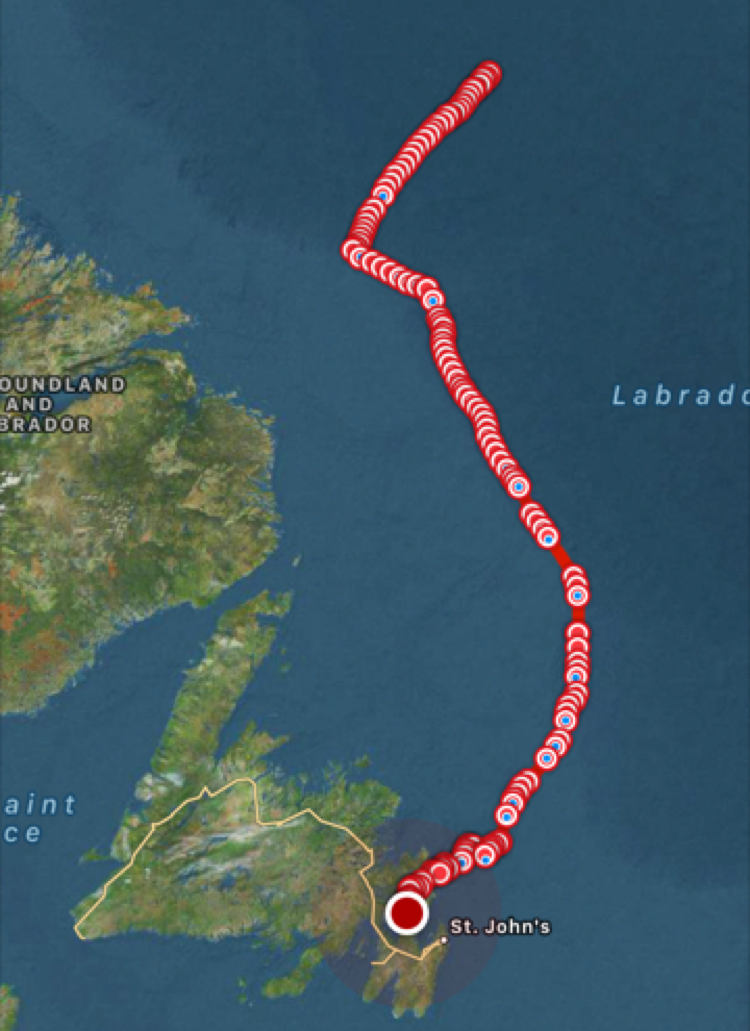 Return path of the glider from the Labrador Sea a trip that took about 40 days and led to the successful recovery of the glider just off Heart's Content, Newfoundland