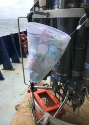 Photo of a white sheer laundry bag with colored Styrofoam cups inside. The bag has been attached to the rosette frame with tie wraps, and waits on deck for the next CTD cast.